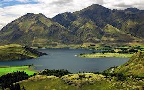 Iceland greenery