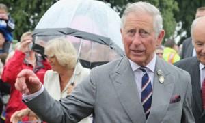 Prince Charles lobbying David Cameron