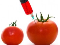 US health authority votes in favour of GMO labelling bill