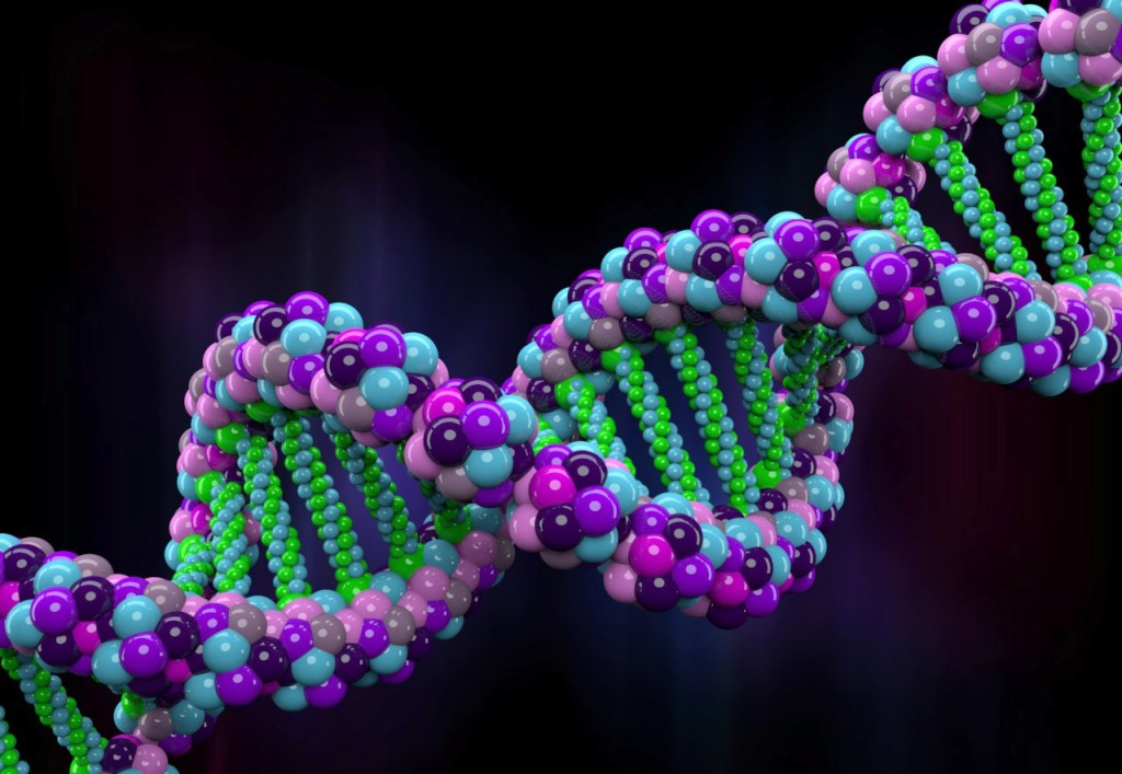 Ancestral memories can be passed down our DNA, according to new findings