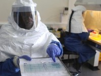 Ebola: WHO announces plans to release untested vaccine