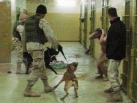 The CIA have been known to use the most brutal and sadistic torture methods on detainees and their children - many of which have not been proven to have committed or charged with any crime
