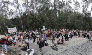 Corporations will be able to sue protesters for defamation in Tasmania
