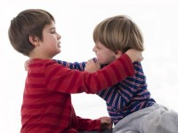Nursery accused of running toddler fight club