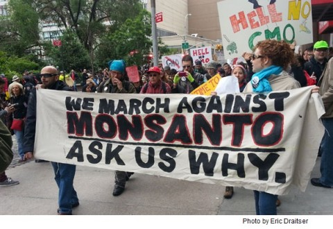 Protesters across the world march against Monsanto