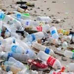 Could this spell the end of plastic bottle waste?