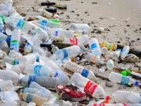 Japanese scientists have created an enzyme that eats away at plastic bottle waste