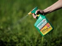 Monsanto ordered to pay millions in Roundup cancer trial