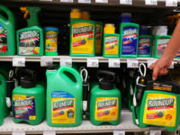 Glyphosate Roundup Tanks Beyer Stocks and Puts Public at Risk